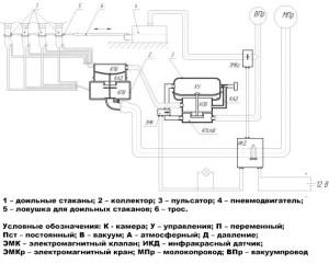 Фото: Схема компоновки самодельного доильного аппарата