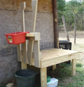 Фото: Станок для доения козы