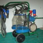 Фото: Доильный аппарат для дойки 2 коров одновременно