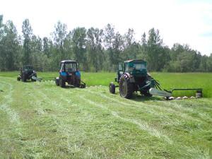 Фото: МТЗ на покосе травы