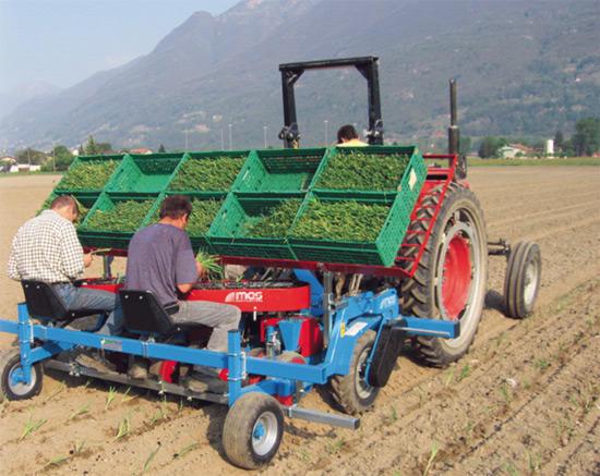 Фото: Рассадопосадочная машина на поле