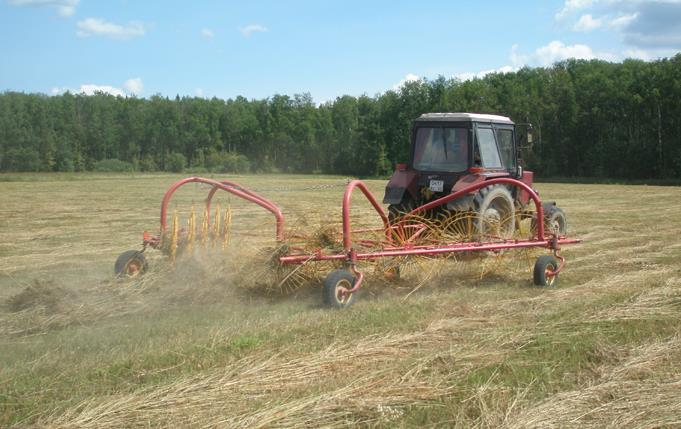 Фото: грабли гвк 6 в работе с трактором МТЗ
